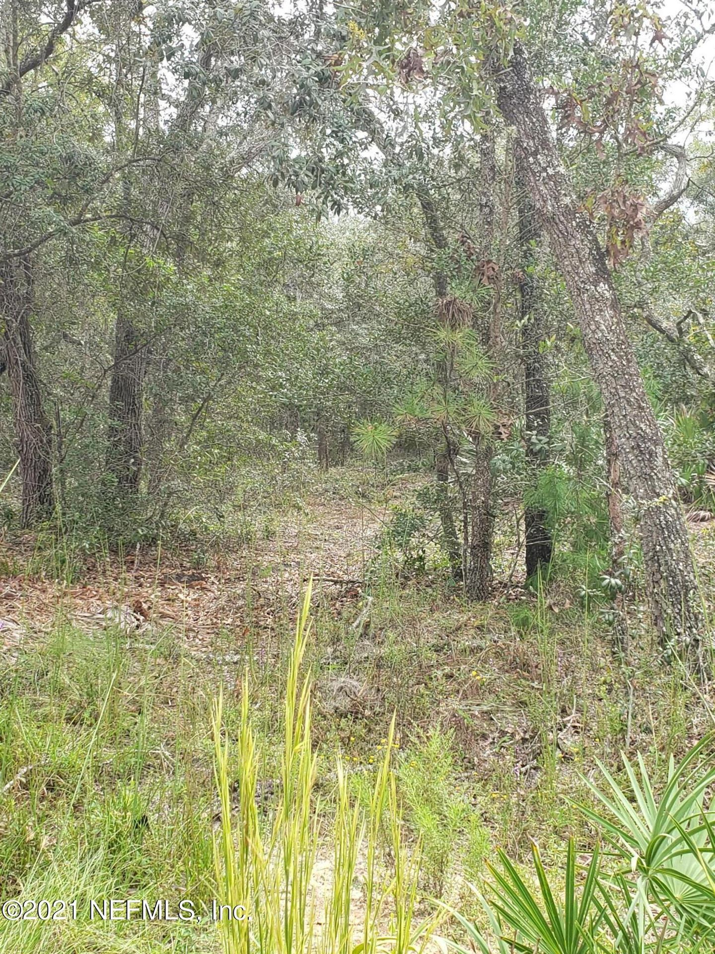 Photo of 00 THOMPSON AVE, INTERLACHEN, FL 32148 (MLS # 1136868)
