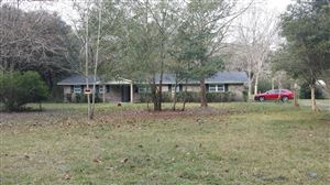 Photo of 2794 PARRISH CEMETERY RD, JACKSONVILLE, FL 32221 (MLS # 992871)