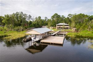 Photo of 230 LAKE DR, FLORAHOME, FL 32140 (MLS # 1011888)