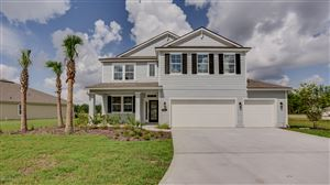 Photo of 253 PRINCE ALBERT AVE, ST JOHNS, FL 32259 (MLS # 975988)