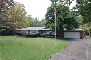 Photo of 10116 New Buffalo Road, Canfield, OH 44406 (MLS # 4135020)