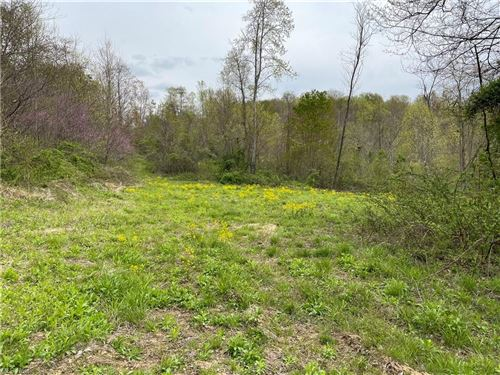 Tiny photo for County road 45, Caldwell, OH 43724 (MLS # 4275092)