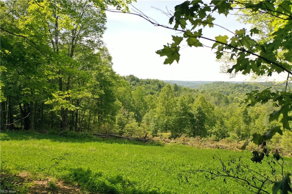 Photo for County Rd 45, Caldwell, OH 43724 (MLS # 4275096)