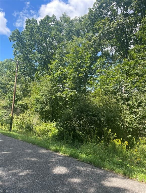 Photo of 48226 Dyke Road, Negley, OH 44441 (MLS # 4314098)