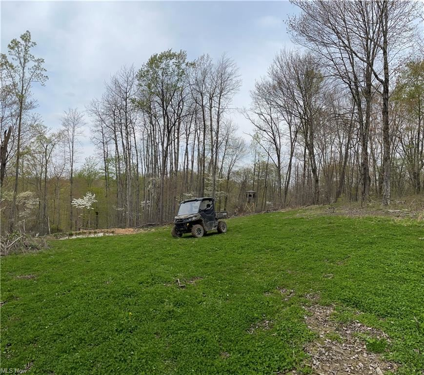 Photo for County Rd 45, Caldwell, OH 43724 (MLS # 4275101)