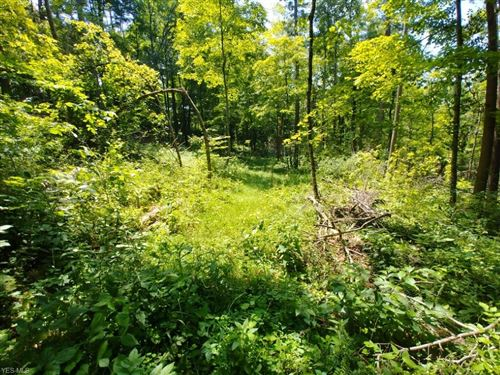Tiny photo for State Route 377, Chesterhill, OH 43728 (MLS # 4160230)