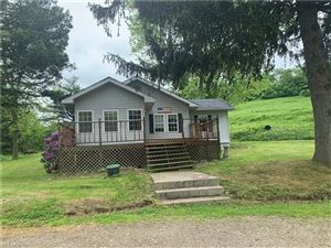 Photo of 32342 South Leatherwood Rd, Barnesville, OH 43713 (MLS # 4079293)