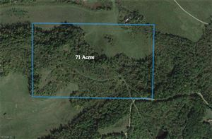 Photo of Sandy Point Twp Rd 257, Dexter City, OH 45727 (MLS # 4066368)
