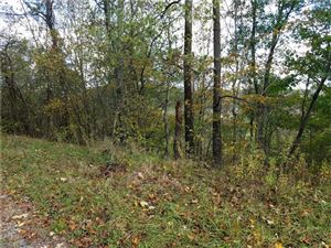Tiny photo for Sandy Point Twp Rd 257, Dexter City, OH 45727 (MLS # 4066368)