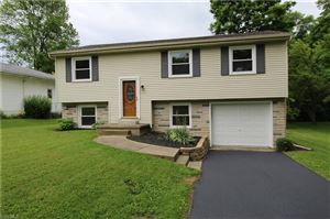 Photo of 3967 New Rd, Austintown, OH 44515 (MLS # 4099390)