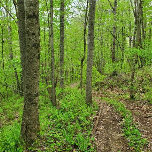 Tiny photo for Township Road 22, McArthur, OH 45651 (MLS # 4196406)