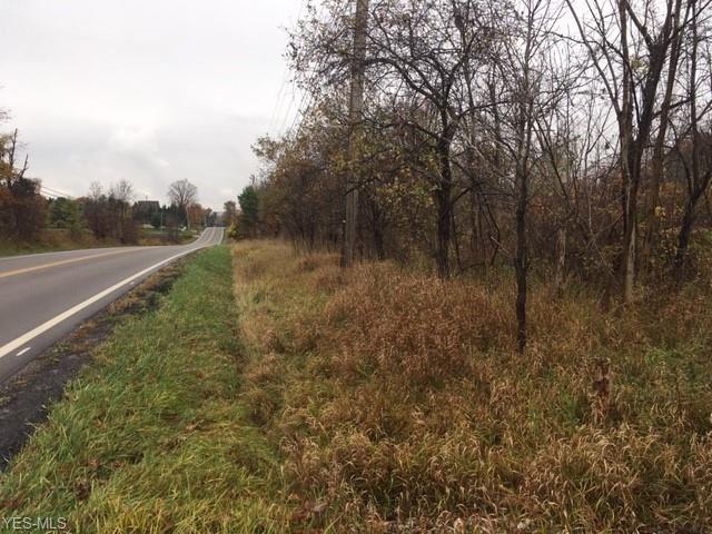 Ridge Road, Hinckley, OH 44233 - #: 4236456
