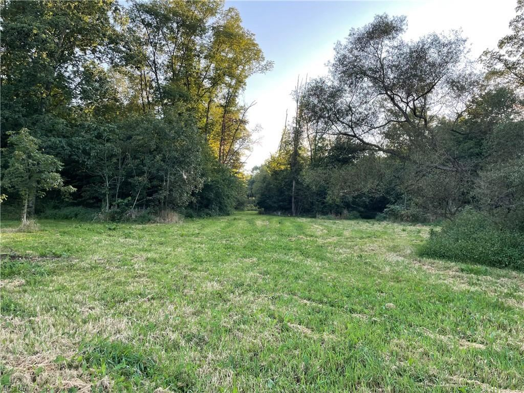 Photo for Poland Unity Road, East Palestine, OH 44413 (MLS # 4314523)