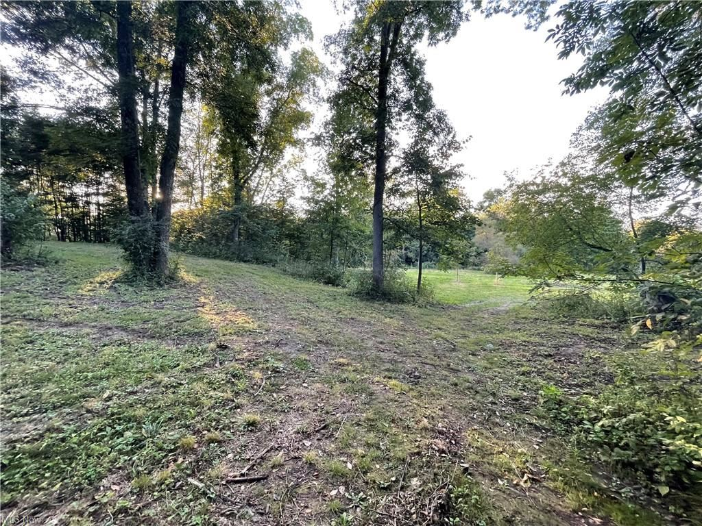 Photo of Poland Unity Road, East Palestine, OH 44413 (MLS # 4314523)