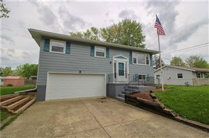 Photo of 3624 High Meadow Dr, Canfield, OH 44406 (MLS # 4087534)