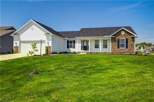 Photo of 10370 Carrousel Woods Drive, New Middletown, OH 44442 (MLS # 4123534)