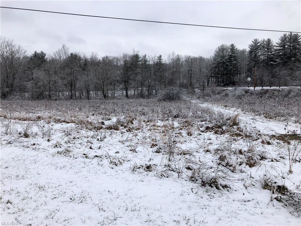 Photo for Salt Run Road, Caldwell, OH 43724 (MLS # 4251719)