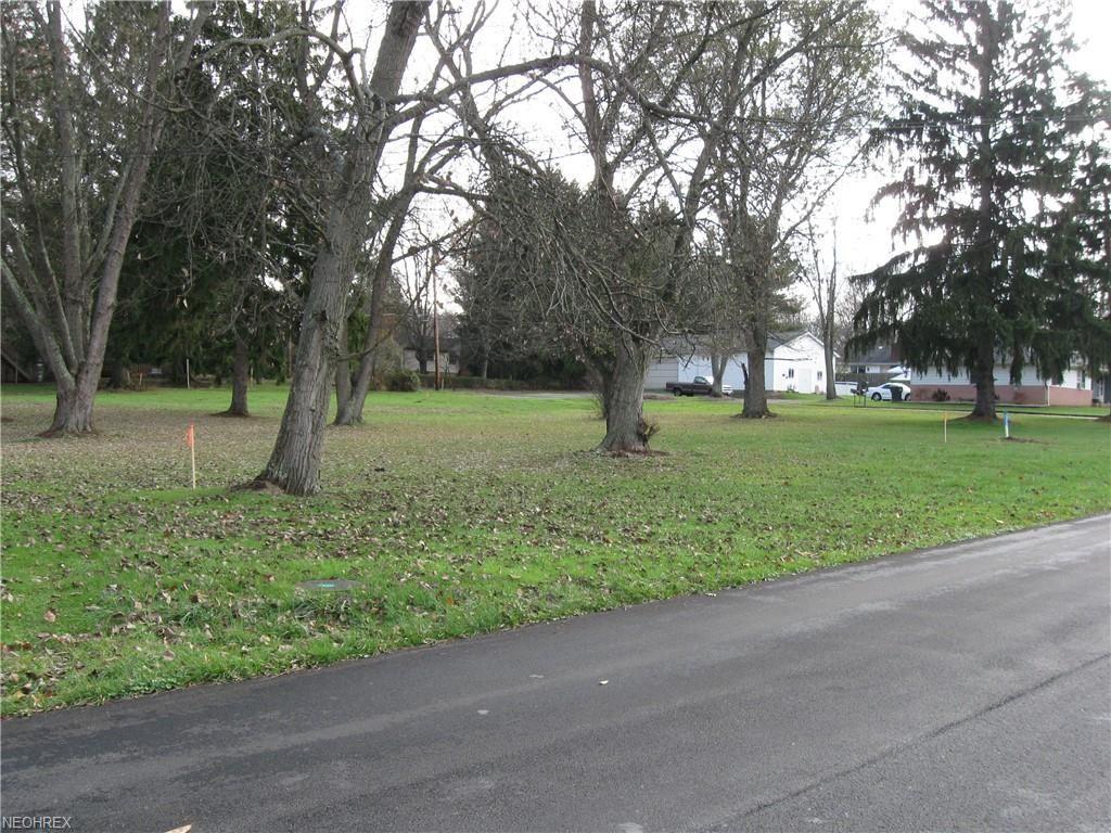 Photo of 800 Main Street, Columbiana, OH 44408 (MLS # 4054761)