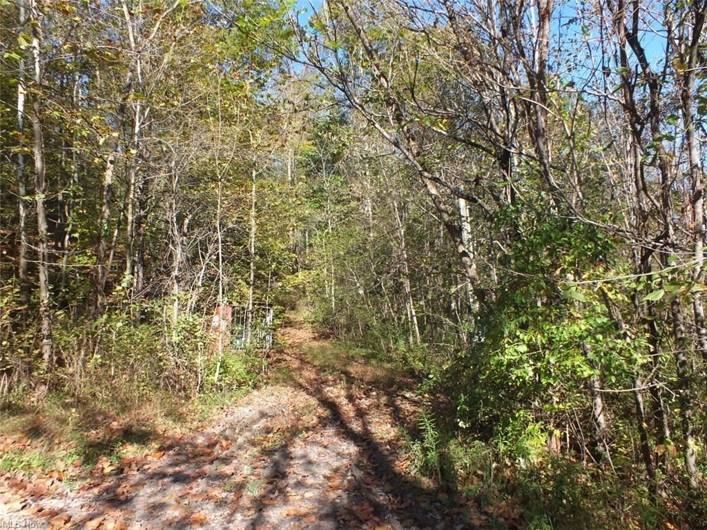 Photo of Groves Hill Road, Caldwell, OH 43724 (MLS # 4327800)