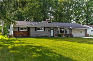 Photo of 228 Coventry Drive, Painesville, OH 44077 (MLS # 4125801)
