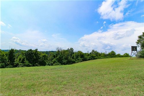 Photo of Parry Hollow, Caldwell, OH 43724 (MLS # 4308876)