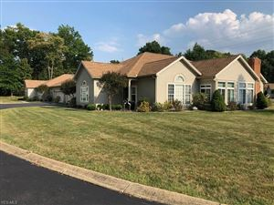 Photo of 19 Hunters Woods Boulevard #B, Canfield, OH 44406 (MLS # 4133974)