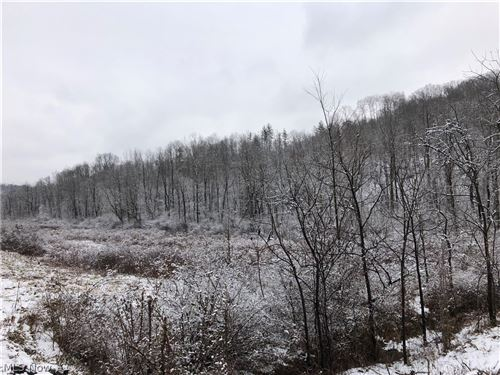 Photo of Salt Run Road, Caldwell, OH 43724 (MLS # 4251974)