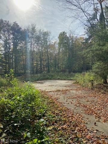 Photo of 34500 Jackson Road, Moreland Hills, OH 44022 (MLS # 4324984)
