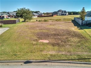 Photo of 223 E 127th Street, Jenks, OK 74037 (MLS # 1937586)
