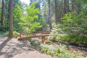 Photo of 17548 State Highway 49 N/A, Camptonville, CA 95922 (MLS # 20190686)