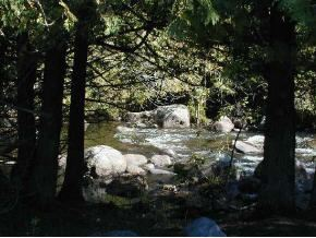 Photo of NORTH BRANCH Road, LEOPOLIS, WI 54948 (MLS # 10700967)