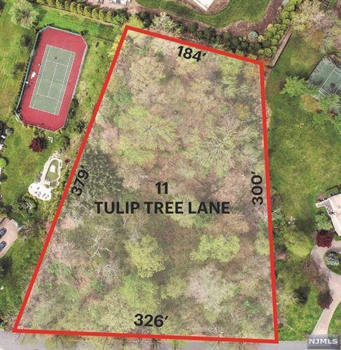 Photo of 11 Tulip Tree Lane, Alpine, NJ 07620 (MLS # 1953920)