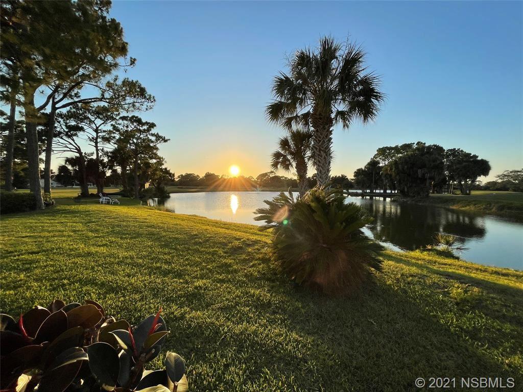Photo of 208 Golf Club Drive, New Smyrna Beach, FL 32168 (MLS # 1063038)
