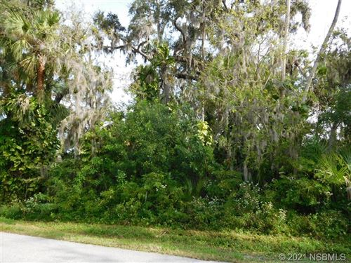 Photo of 0 Lime Tree Drive, Edgewater, FL 32141 (MLS # 1062138)