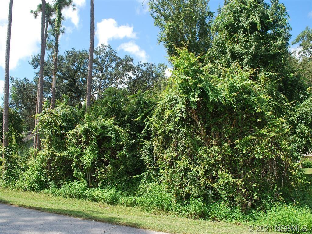 Photo of 0 Vista Palm Drive, Edgewater, FL 32141 (MLS # 1066152)