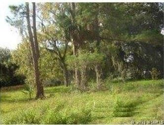 Photo of 1997 Pioneer Trail, New Smyrna Beach, FL 32168 (MLS # 1062173)