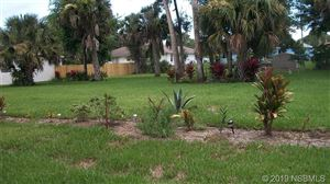 Photo of 3213 Lime Tree Drive, Edgewater, FL 32141 (MLS # 1050204)