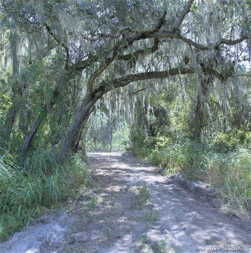 Photo of 2710 Pearl Lake Trail, New Smyrna Beach, FL 32168 (MLS # 1066290)