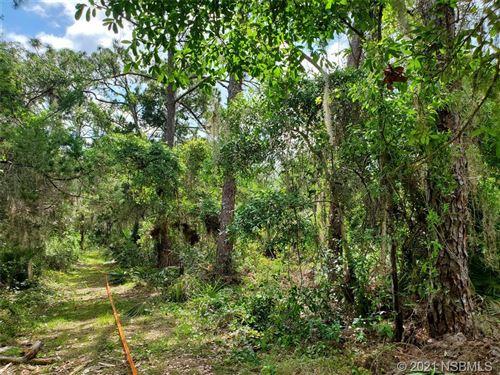 Photo of 149 Osteen Street, Oak Hill, FL 32759 (MLS # 1063314)