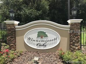 Photo of 0 Winnemissett Oaks Drive, DeLand, FL 32724 (MLS # 1052501)