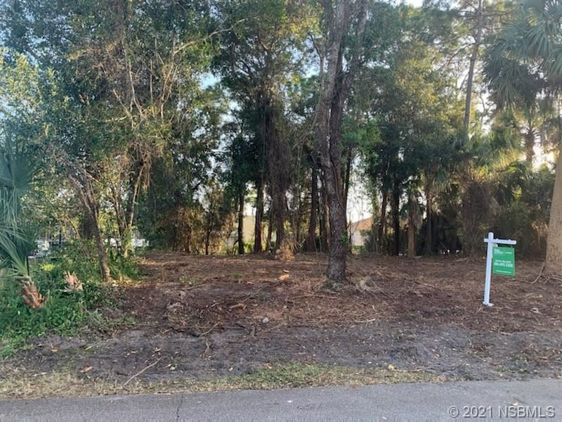 Photo of 122 Azalea Road, Edgewater, FL 32141 (MLS # 1061558)