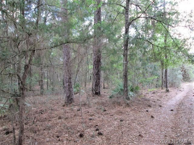 Photo of 4029 S Shannondale, Out of Area, FL 34446 (MLS # 1061574)