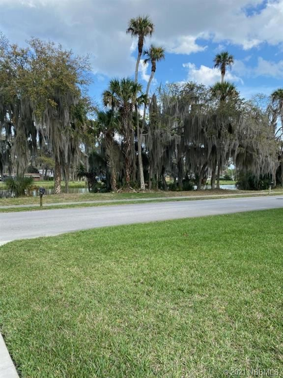 Photo of 2716 Mango Tree Drive, Edgewater, FL 32141 (MLS # 1062687)