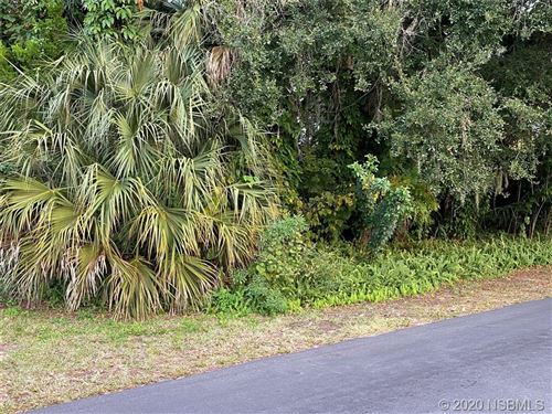 Photo of 2003 Royal Palm Drive, Edgewater, FL 32141 (MLS # 1061842)