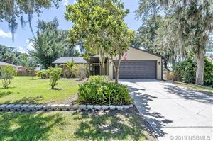Photo of 3032 Needle Palm Drive, Edgewater, FL 32141 (MLS # 1050907)