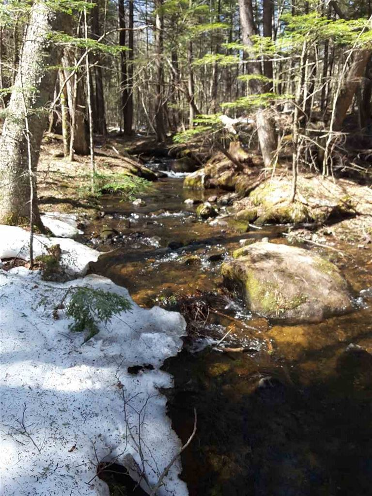Photo for Lot 4 Lower Beech Hill Road, Campton, NH 03223 (MLS # 4625035)