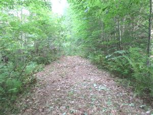 Photo of 0 Route 114, Sutton, NH 03260 (MLS # 4506036)