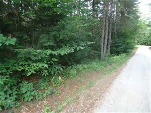 Photo of 35 Spruce Lane, Danbury, NH 03230 (MLS # 4663037)