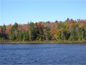 Photo of 57 Pond's Edge Lane, New London, NH 03257 (MLS # 4676057)