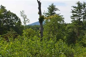 Photo of Patterson Road, Wilmot, NH 03287 (MLS # 4654079)